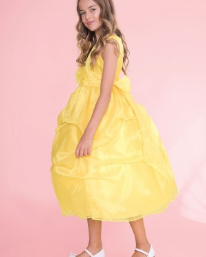 Yellow Ball Gown Round Neck Girl's Pageant Dress with Bowknot