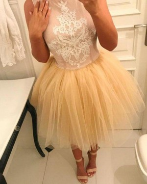 Appliqued Jewel Pink and Champagne Homecoming Dress with Tulle Skirt HD3372