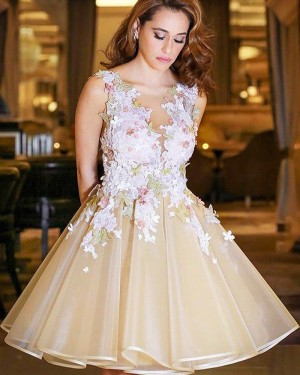 Short Tulle Appliqued Bateau Champagne Formal Dress HD3427