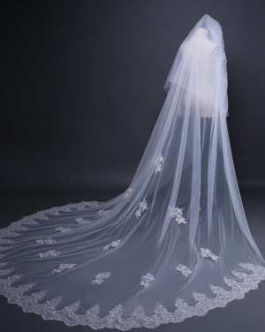 Two Tiers Lace Applique Tulle Chapel Length Wedding Veil TS17109