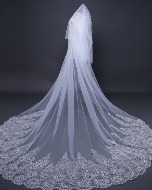 Two Tiers Tulle Beaded Lace Applique Edge Wedding Veil TS17110