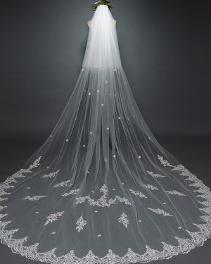 Two Tier White Lace Applique Cathedral Length Wedding Veil with Comb TS17117