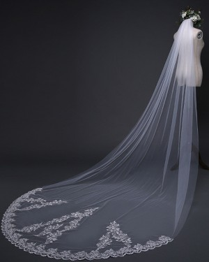 White Lace Applique Edge Cathedral Length Wedding Veil TS17119