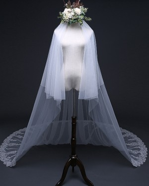 Two Tier Lace Applique Tulle Cathedral Length Wedding Veil TS17120