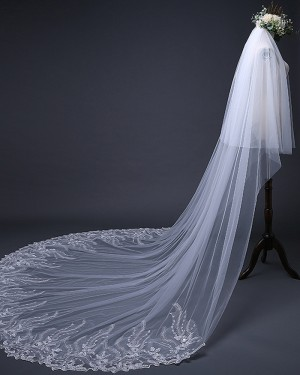 Two Tiers White Cathedral Length Lace Applique Edge Wedding Veil TS17124