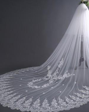 Two Tiers Ivory Lace Applique Edge Cathedral Wedding Veil TS17135