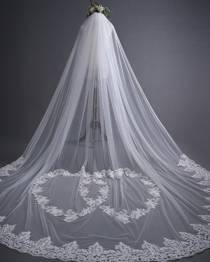 White One Tier Tulle Lace Applique Cathedral Length Wedding Veil TS17139