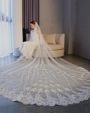 White Lace Applique Edge Tulle Cathedral Length Wedding Veil TS17153
