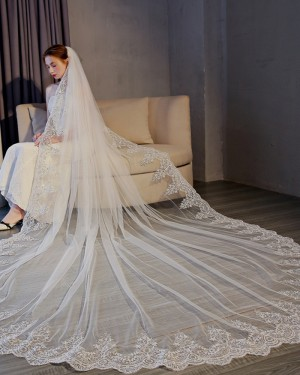 Gorgeous Lace Applique Edge Tulle Cathedral Wedding Veil TS17154