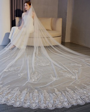 Ivory Lace Applique Edge Tulle Cathedral Length Wedding Veil TS17155