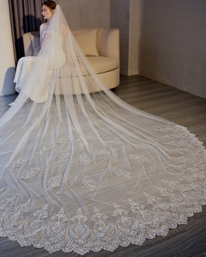 One Tier White Lace Applique Edge Cathedral Wedding Veil TS17156