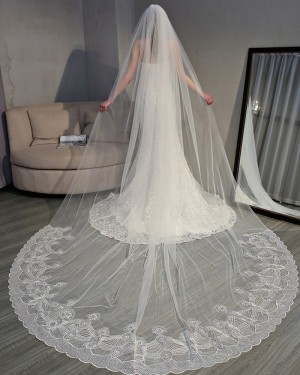 Ivory Lace Applique Edge Cathedral Wedding Veil TS18004