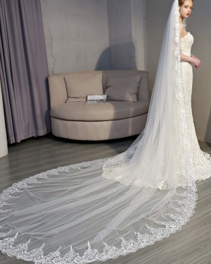 Ivory Lace Applique Edge Cathedral Wedding Veil with Comb TS18005