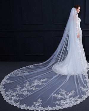 White Lace Applique Edge Cathedral Length Wedding Veil TS18009
