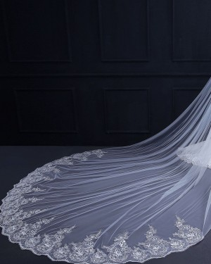 White Beaded Lace Applique Edge Cathedral Wedding Veil TS18010