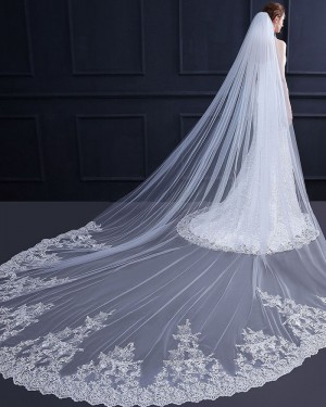 White Lace Applique Edge Cathedral Wedding Veil with Comb TS18011
