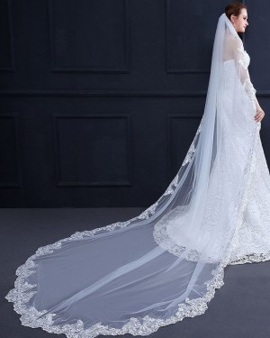 Lace Applique Edge Cathedral Length Wedding Veil with Comb TS18013