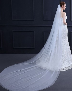 Simple White Tulle Cathedral Length Wedding Veil TS18015