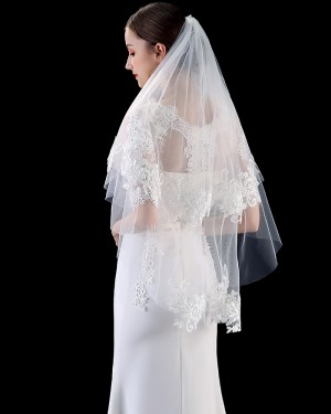 Two Tiers Tulle Lace Applique Edge Wedding Veil with Comb TS1902