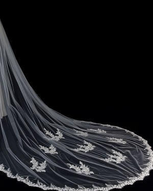 Ivory Tulle Applique Cathedral Length Wedding Veil with Comb TS1907