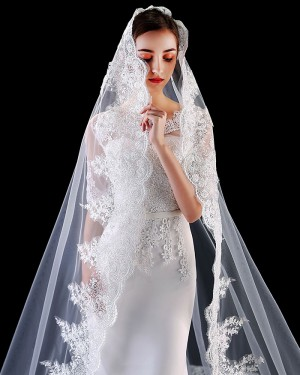 Elegant One Tier White Tulle Applique Cathedral Length Wedding Veil TS1908