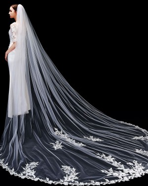 Ivory One Tier Lace Applique Edge Tulle Cathedral Length Wedding Veil with Comb TS1910