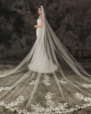 One Tier Ivory Applique Edge Cathedral Length Wedding Veil with Comb TS1910A