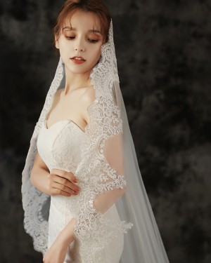 White Lace Applique Tulle Cathedral Length Wedding Veil TS1927
