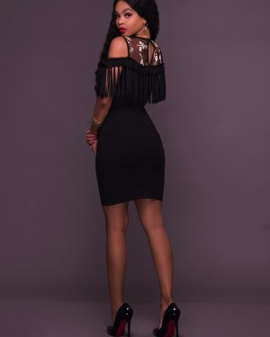 Jewel Sheer Embroidery Bodycon Club Dress with Tassels M651